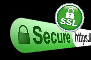 OpenSoft e-Leave uses SSL security